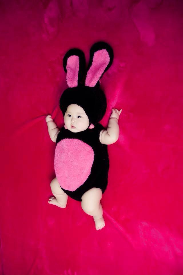 图]「最爱宝贝照」妈妈最喜欢我这胖胖的兔子
